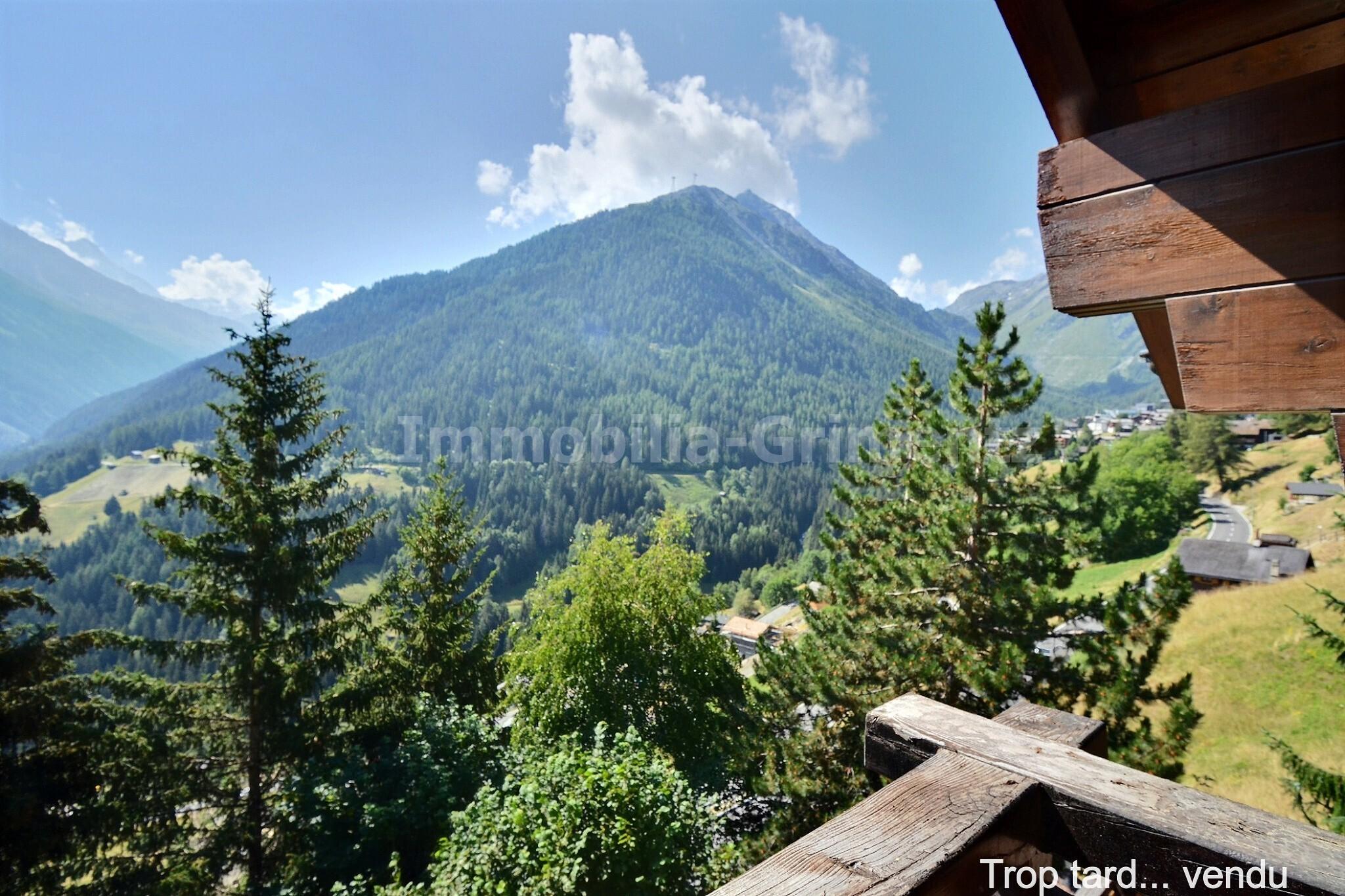 3_mountain_view_2