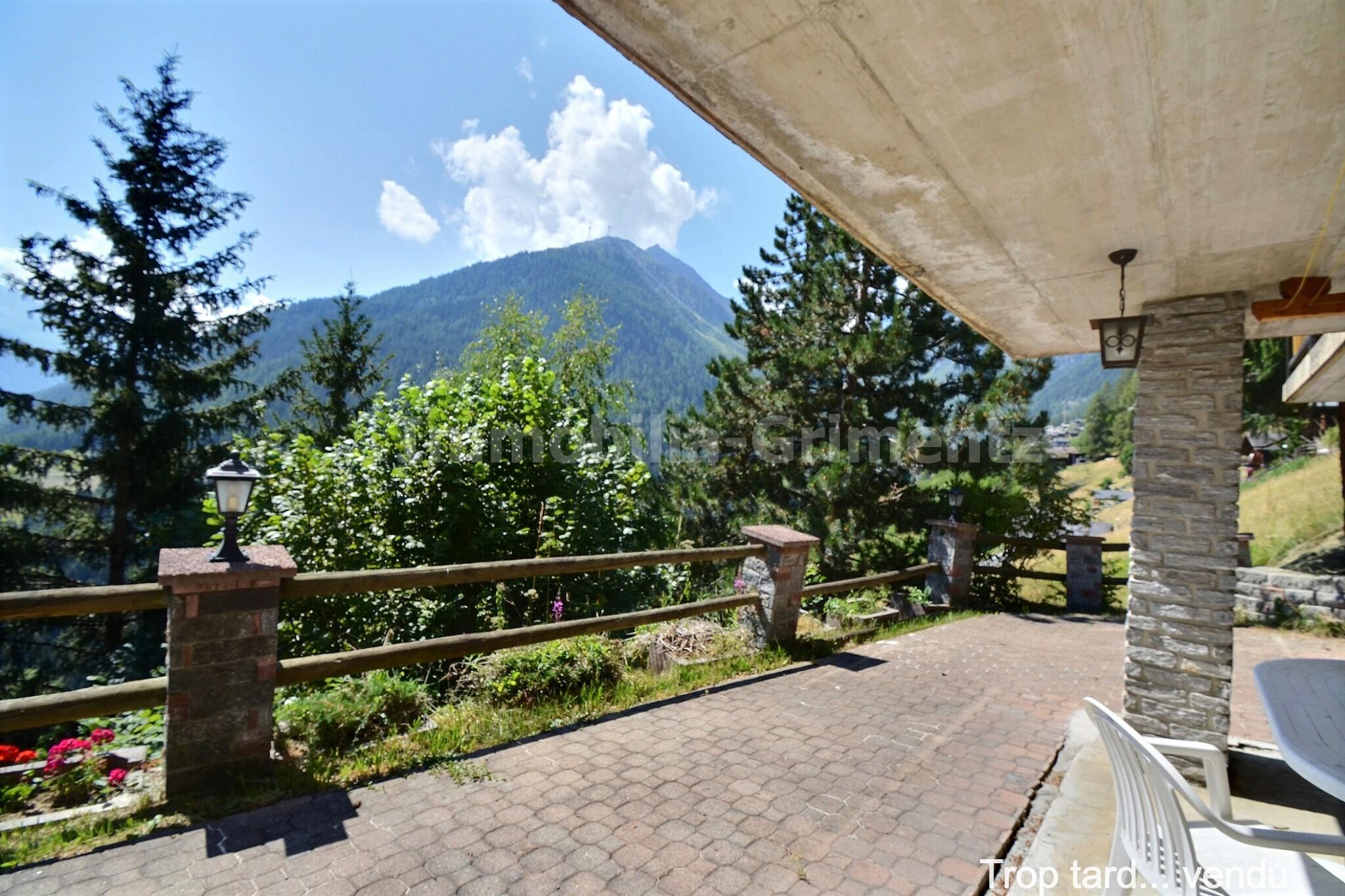 3_mountain_view_3