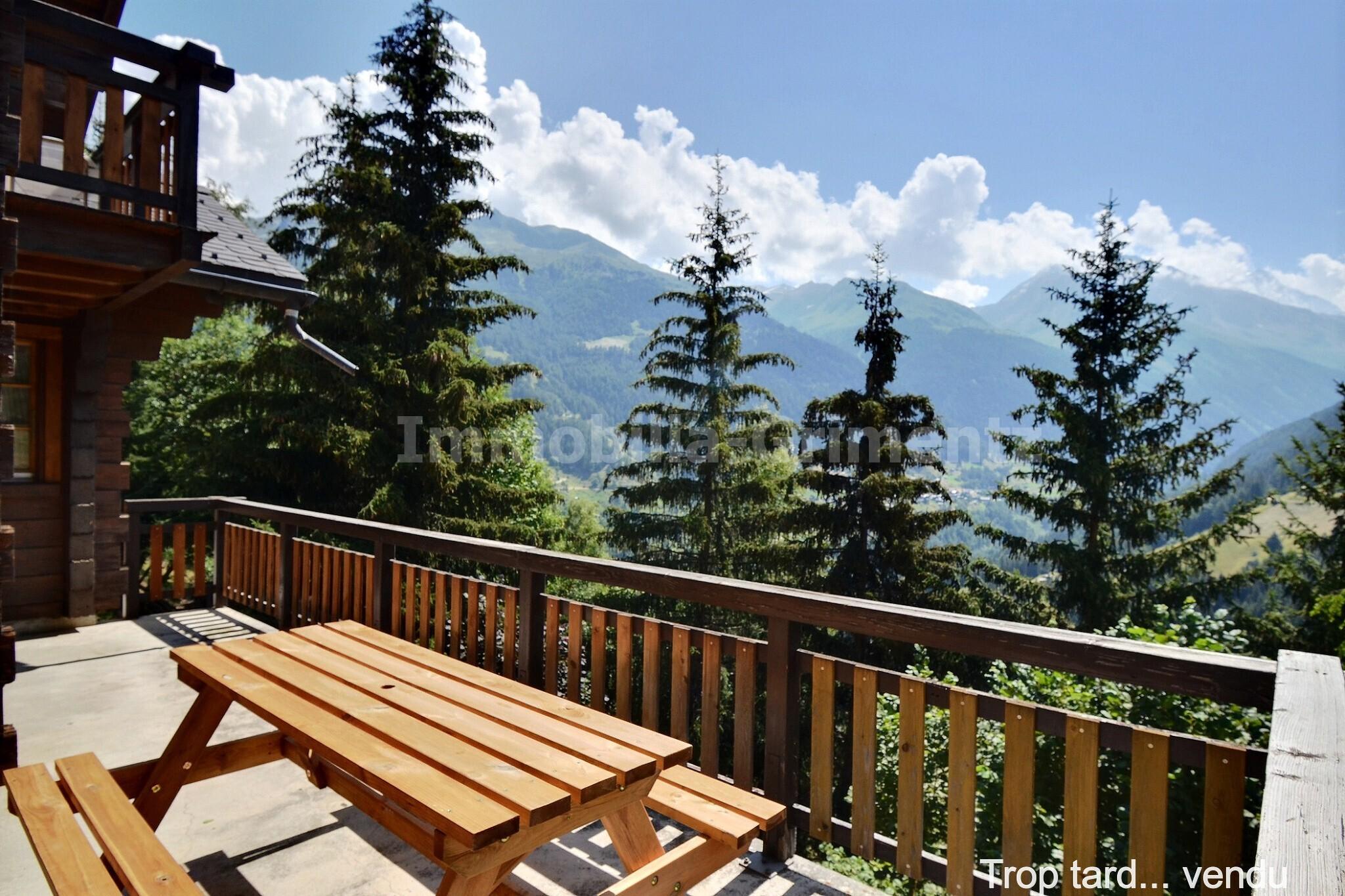 3_mountain_view_4