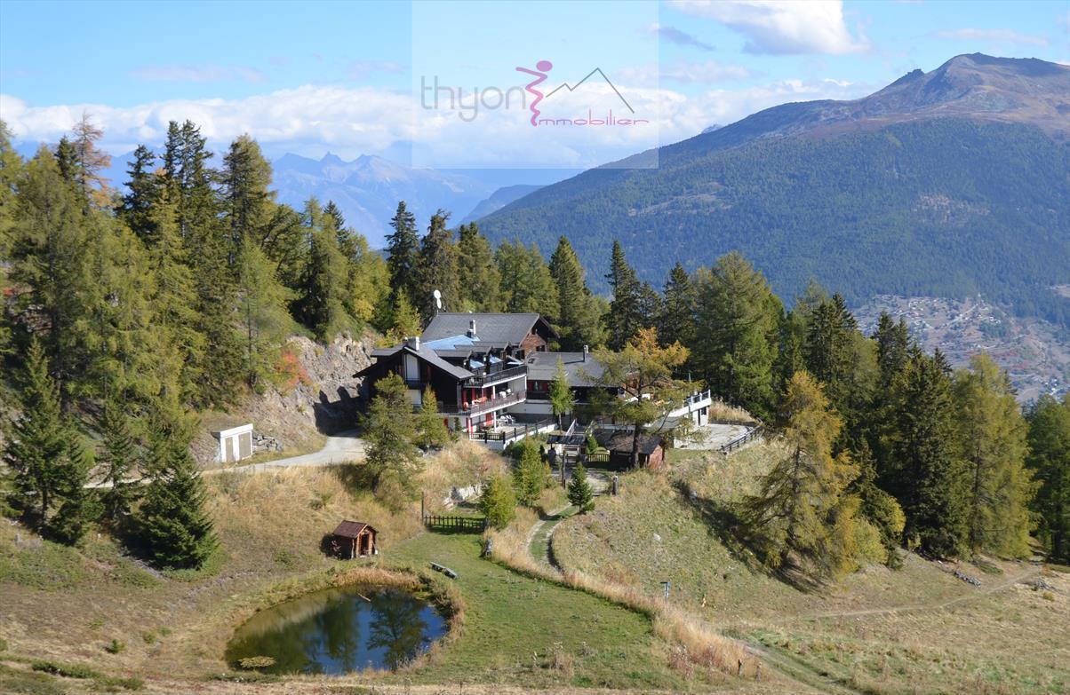 Ferienwohnung La Matze 3 (2511610), Thyon-Les Collons, 4 Vallées, Wallis, Schweiz, Bild 10
