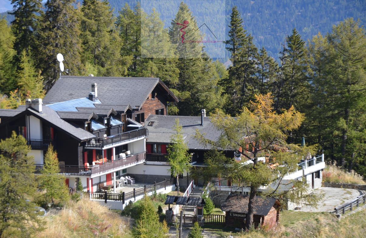 Ferienwohnung La Matze 2 (2511613), Thyon-Les Collons, 4 Vallées, Wallis, Schweiz, Bild 7