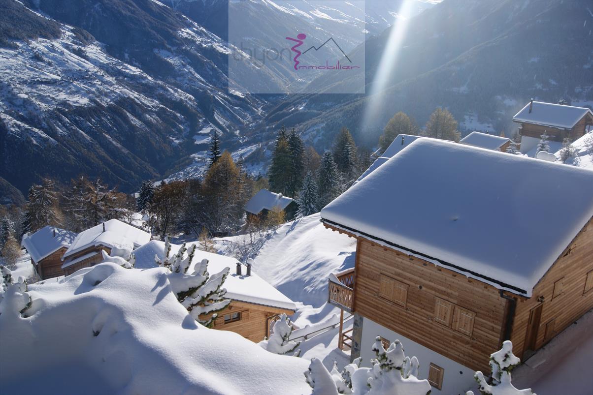 Ferienwohnung Mont-Noble 233 (2075521), Thyon-Les Collons, 4 Vallées, Wallis, Schweiz, Bild 7